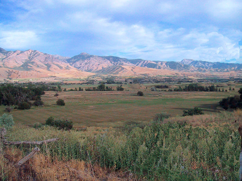 1826 Willow Valley Rendezvou