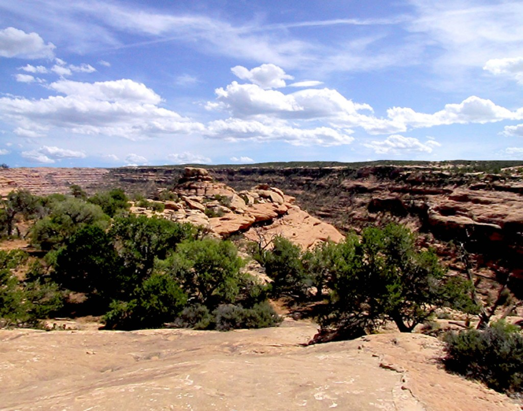 Citadel on Cedar Mesa - Grand Gulch Area