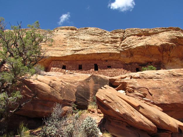 Citadel Anasazi houses
