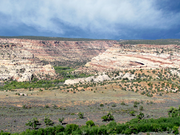 Mule Canyon entrance into Comb Wash