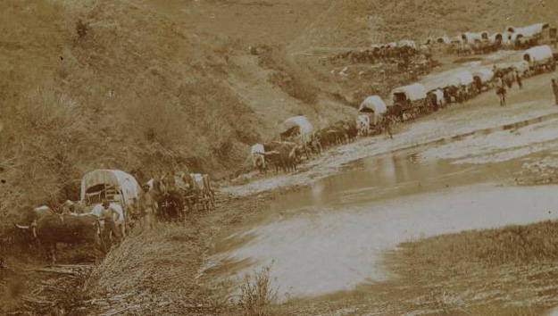 MT-Mormon Wagon Train